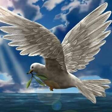 HOLY SPIRIT DOVE ft.jpg
