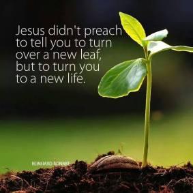 NEW LIFE grace to grow.jpg