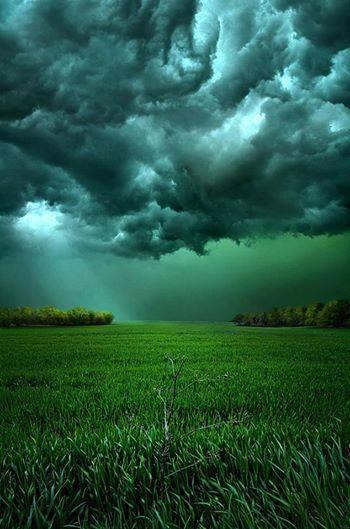 STORMS GATHER