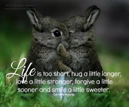 bunny-hugs