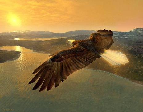 eagle way.jpg